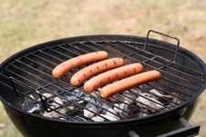 Free Spring Grilling Royalty Free Stock Photos - 8927548