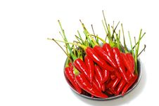 Free Spicy Series 3 Royalty Free Stock Images - 8927949