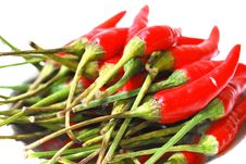 Free Spicy Series 3 Stock Images - 8928894