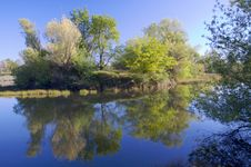Free American River Pond With Reflection 2 Stock Photos - 8928963