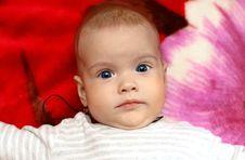 Free Newborn Stock Image - 8929101
