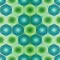 Free Seamless Green Pattern Royalty Free Stock Image - 8930796