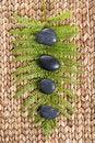 Free Zen Stones On A Grass Mat With A Fern Stock Photos - 8931863