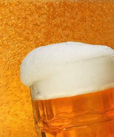 Free Fresh Beer Royalty Free Stock Photo - 8930925
