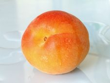 Ripe Apricot Stock Images