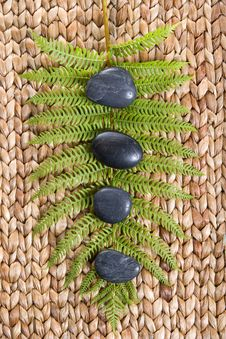 Free Zen Stones On A Grass Mat With A Fern Stock Photos - 8931863