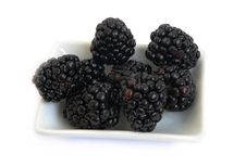 Free Blackberry On A Plate Royalty Free Stock Image - 8931906