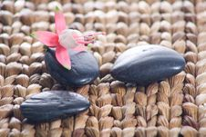 Free Zen Stones With Pink Flowers Royalty Free Stock Image - 8932386
