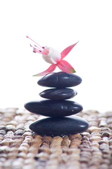 Free Zen Stones With Pink Flowers Royalty Free Stock Images - 8932419