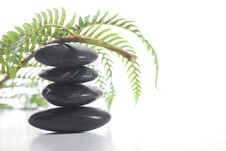 Free Zen Stones With A Fern Royalty Free Stock Image - 8932886