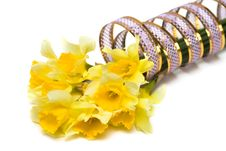 Free Yellow Daffodil With Ribbon Stock Images - 8937334