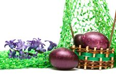 Free Easter Eggs With Spring Flowers Royalty Free Stock Image - 8937526