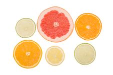 Free Fruits   Slices Royalty Free Stock Image - 8937886