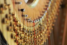 Free Concert Harp Royalty Free Stock Images - 89304959