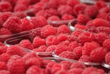 Free Fresh Red Raspberries Stock Photography - 89306252