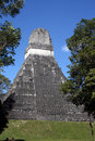 Free Tikal Temple Stock Photo - 8947060