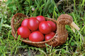 Free Easter Eggs Stock Photo - 8949640