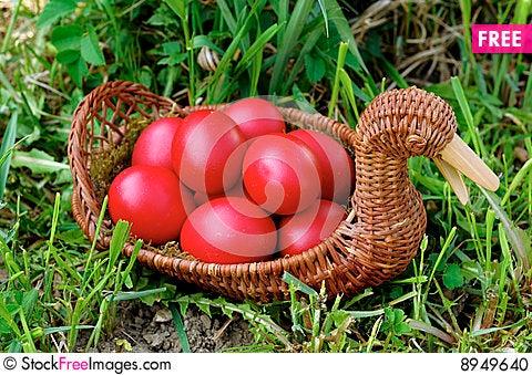 Free Easter Eggs Stock Photo - 8949640