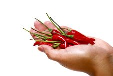 Free Spicy Series 2 Stock Image - 8940781