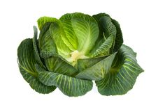 Free Cabbage Isolated On White Royalty Free Stock Photo - 8941475