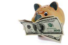 Free Piggy Bank - Financial Crisis Stock Photos - 8941803