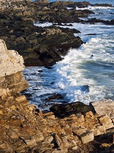 Coast Of Maine Stock Photos