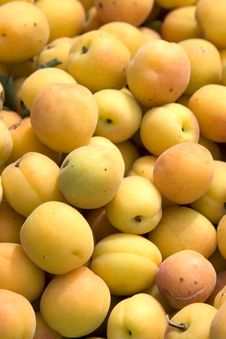 Free Apricots Stock Image - 8943361