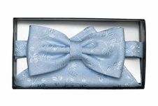 Free Blue Tie-butterfly And Shawl Stock Photos - 8944703