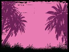 Free Palms Stock Image - 8946381