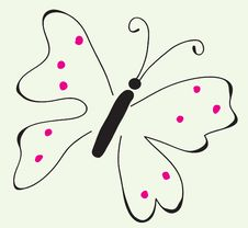 Free Butterfly Stock Photo - 8946560