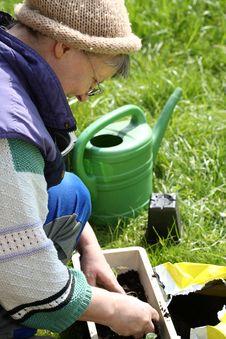 Free Gardening. Stock Photo - 8947670