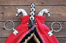 Free Decoration Of Harness Royalty Free Stock Photo - 8948115