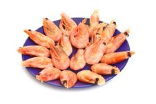 Shrimp In Plate Stock Images
