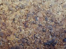 Free Texture Servez-vous Royalty Free Stock Photography - 89440487