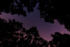 Free Silhouette Photo Of Trees During Nighttime Royalty Free Stock Photos - 89440848