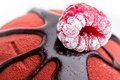 Free Chocolate Cake With Raspberry Topping Stock Photo - 8950320