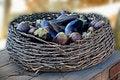 Free Eggplants Stock Photos - 8952103