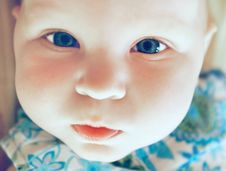 Free Portrait Of Cute Baby Stock Images - 8950174