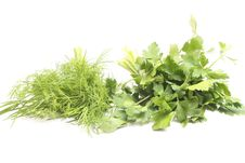 Free Parsley Stock Image - 8950481