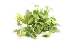 Free Parsley Royalty Free Stock Image - 8950486