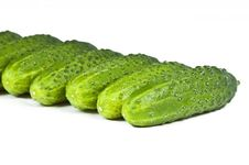 Green Cucumber Vegetable Fruits Line Royalty Free Stock Photos