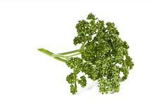 Free Parsley Green Leaf Closeup Royalty Free Stock Photography - 8950567