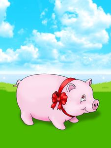 Free Pig Stock Photos - 8952133