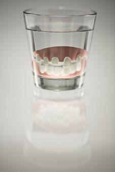 Free False Teeth Royalty Free Stock Photo - 8952505