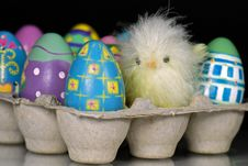 Free Easter Chick Stock Photo - 8953810