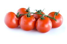 Free Tomatoes Stock Image - 8955711