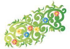 Free Fresh Pattern Royalty Free Stock Photo - 8956325