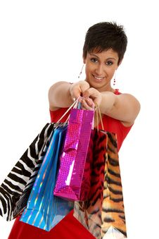 Free Girl Shopping Stock Images - 8956514