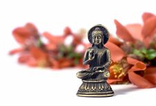 Free Isolated Buddha With Red Flowers Stock Photography - 8956662