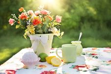 Free Red And Pink Flowers On Pot On Table Stock Photo - 89507330